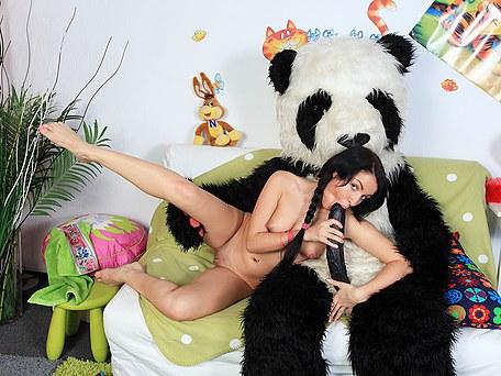 Huge panda owns girls by unusual sex toy